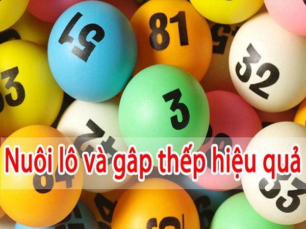 nuoi-lo-va-gap-thep-hieu-qua