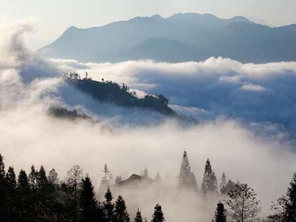 Mơ thấy sương mù là điềm lành hay dữ?